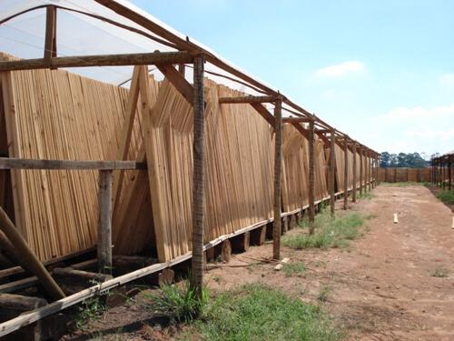 Processo de secagem da madeira ao ar livre