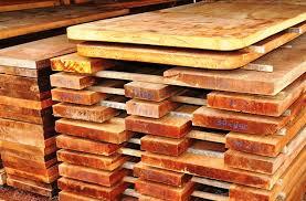 Manejo sustentável da madeira